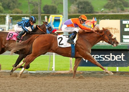 Spendthrift Farm's Jimmy Creed and jockey Garrett Gomez, right, overpower Private Zone (Martin Pedroza), left, to win the Grade I, $300,000 Malibu Stakes, Wednesday, December 26, 2012 at Santa Anita Park, Arcadia CA.