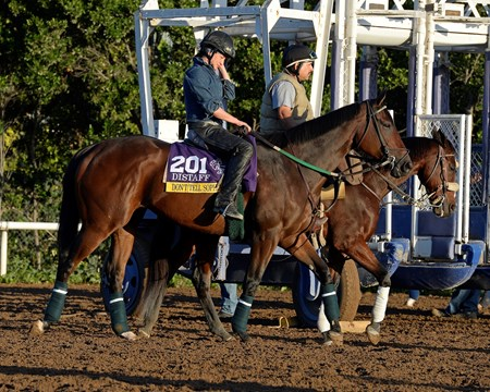 Caption:  Don't Tell Sophia goes to the track.