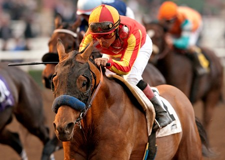 Around this time last year, Hoppertunity still had 20 days to go before breaking his maiden. On Saturday at Santa Anita Park, the colt who became a grade I winner at the end of the season continued his rise with a solid score in the $200,000 Grade II San Pasqual Stakes at Santa Anita Park.