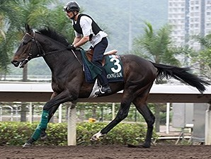 Smoking Sun works at Sha Tin April 22.