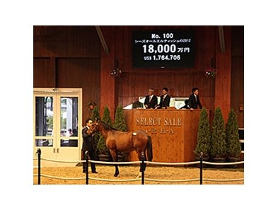 Hip 100 by Deep Impact and out of Shes All Eltish was the JRHA sale topper.