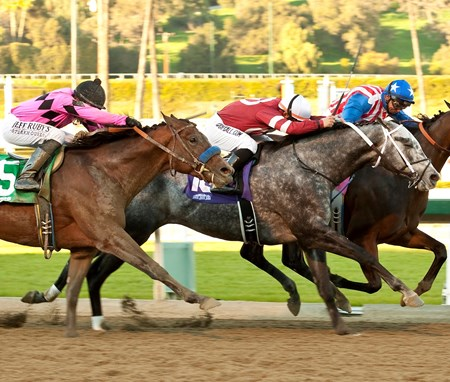 Kaleem Shah's Fed Biz and jockey Mike Smith, right, overpower Tritap (Corey Nakatani), second from left, and Guilt Trip (Joseph Talamo), left, to win the Grade II, $150,000 San Fernando Stakes, Saturday, January 12, 2013 at Santa Anita Park, Arcadia CA.