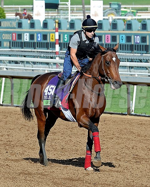 Caption:  Anodin