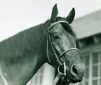 Citation: More than 60 years after his 1948 Triple Crown, he is still regarded as one of the greatest of all time.