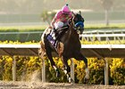 Rolling Fog; Division: Grey Goose Juvenile; Race Won: Del Mar Futurity