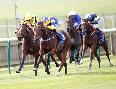 Chriselliam charged past favorite Rizeena with a torrid outside rally from the back of the field and won the Shadwell Fillies' Mile (Eng-I) in a 28-1 upset Sept. 27 at Newmarket.