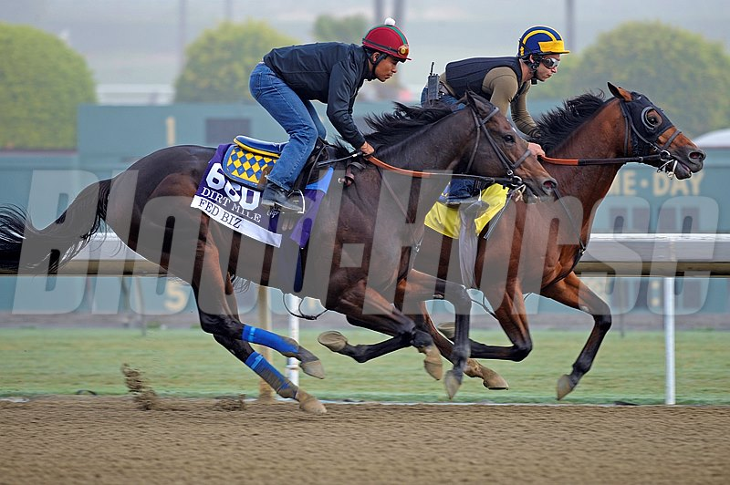 Caption:  Fed Biz with Martin Garcia starts to overtake his workmate
