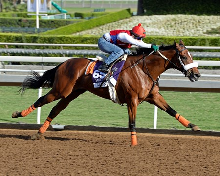 Caption:  Bronzo