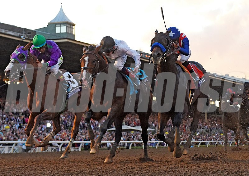 California Chrome, Toast of New York, and Bayern dueling to the finish.