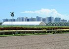 Work Under Way on New Gulfstream Stalls