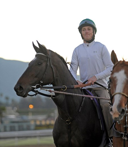 Royal Delta's Breeders' Cup morning jog at Santa Anita.