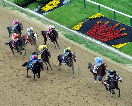 The field for the 138th Preakness Stakes head by the stands the first time at Pimlico on May 18, 2013.