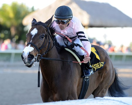 Alpha Delta Stable's Devil's Cave delivered a superb frontrunning performance in the $200,000 Grade II Sabin Stakes at Gulfstream Park, setting a track record while earning her first graded stakes win.