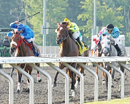 Star Pearl shines in the 6th Running of the Northern Fling Stakes at Presque Isle Downs.