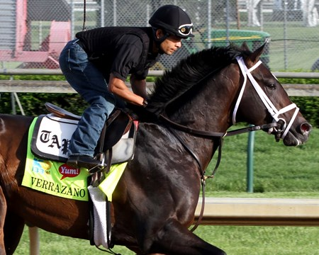 Verrazano on the track at Churchill Downs on May 2, 2013.