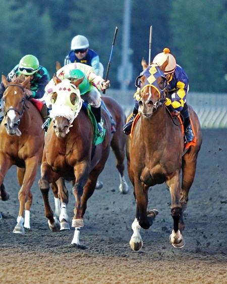 All-weather sprint specialist Living The Life, a recent arrival from overseas, added a third straight win to her record after taking the $400,000 Grade II Presque Isle Downs Masters Stakes at Presque Isle Downs.