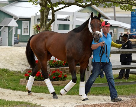 Caption: Bayern with Roberto Luna arrives.