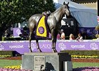 Breeders' Cup Reports 8% Hike in Total Handle