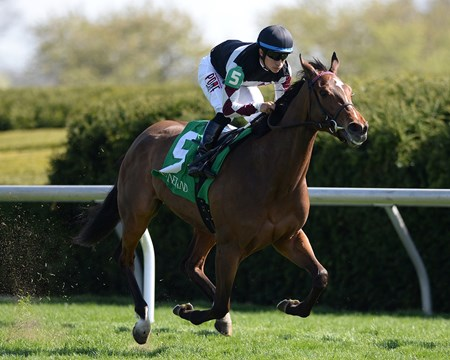 Daring Dancer with Alan Garcia up wins the Appalachian Stakes at Keeneland.