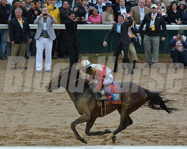 Joel Rosario and Orb approach the finish line with their connections cheering in the background.