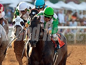 Wild Dude wins the 2015 San Carlos.