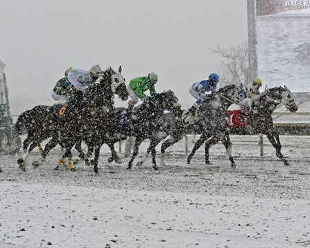 The field dashes through the snow towards the finish line at Parx Racing in Pennsylvania.