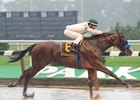 Tough Tiz's Sis stays clean in the slop to win the Ruffian at Belmont Park.