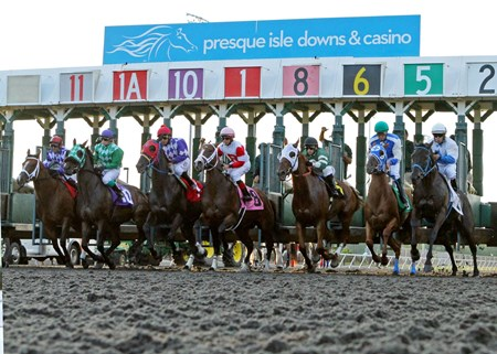Start of the Leematt Stakes eventually won by #6 Roadhog at Presque Isle Downs & Casino in Erie , Pennsylvania.