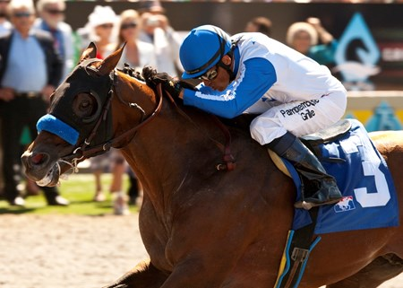 Capital Account and jockey David Flores win the Grade II, $250,000 Pat O'Brien Stakes, Sunday, August 26, 2012 at Del Mar Thoroughbred Club, Del Mar CA.