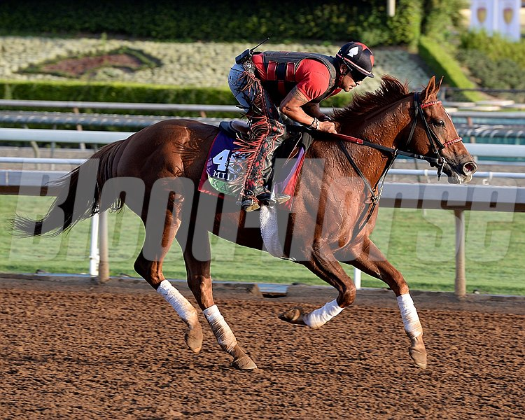 Caption:  Kaigun