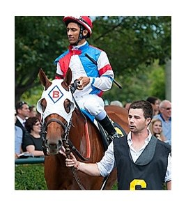 Groupie Doll at Keeneland 10/5/2013.