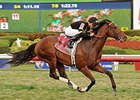 "Long On Value comes on strong to win the Canadian Turf Stakes. <br><a target=""blank"" href=""http://photos.bloodhorse.com/AtTheRaces-1/At-the-Races-2015/i-9TBn9nh"">Order This Photo</a>"