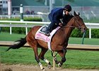"Birdatthewire worked a half-mile in :47 1/5.<br><a target=""blank"" href=""http://photos.bloodhorse.com/TripleCrown/2015-Triple-Crown/Kentucky-Derby-Workouts/i-gpNhJh5"">Order This Photo</a>"