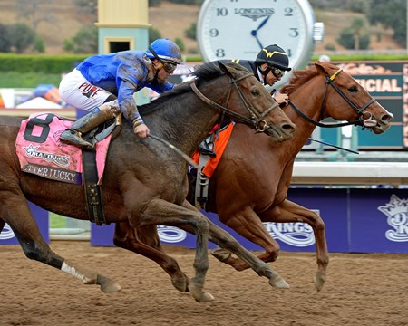 Judy the Beauty, with Mike Smith, wins the Breeders' Cup Filly & Mare Sprint (gr. I) with Better Lucky (#8) in second.