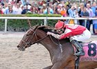 "Birdatthewire<br><a target=""blank"" href=""http://photos.bloodhorse.com/AtTheRaces-1/At-the-Races-2015/i-mhtNkjS"">Order This Photo</a>"