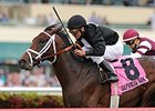 Eh Cumpari comes through with a win in the Palm Beach Stakes.