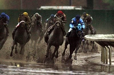 The field turns from home on a very sloppy track.