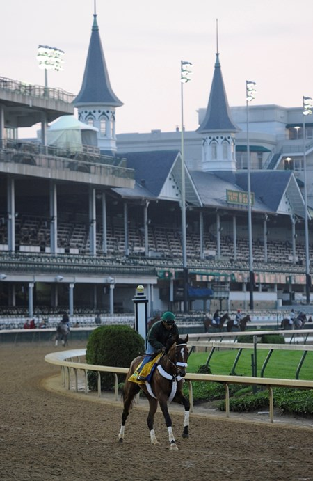 Mucho Macho Man during morning exercises May 4, 2011 at Churchill Downs in Louisville, KY.