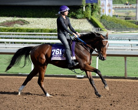 Caption:  Danette