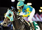 Zayat, Romans Want to See Prayer for Relief in Pegasus
