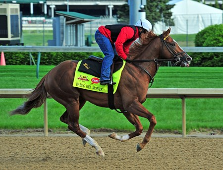 Pablo Del Monte, training Thursday morning at Churchill Downs, draws into the field for the Kentucky Derby, after Hoppertunity scratches...
