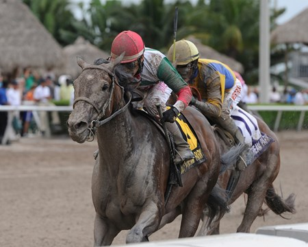 Little Alexis takes the Cash Run Stakes at Gulfstream Park.