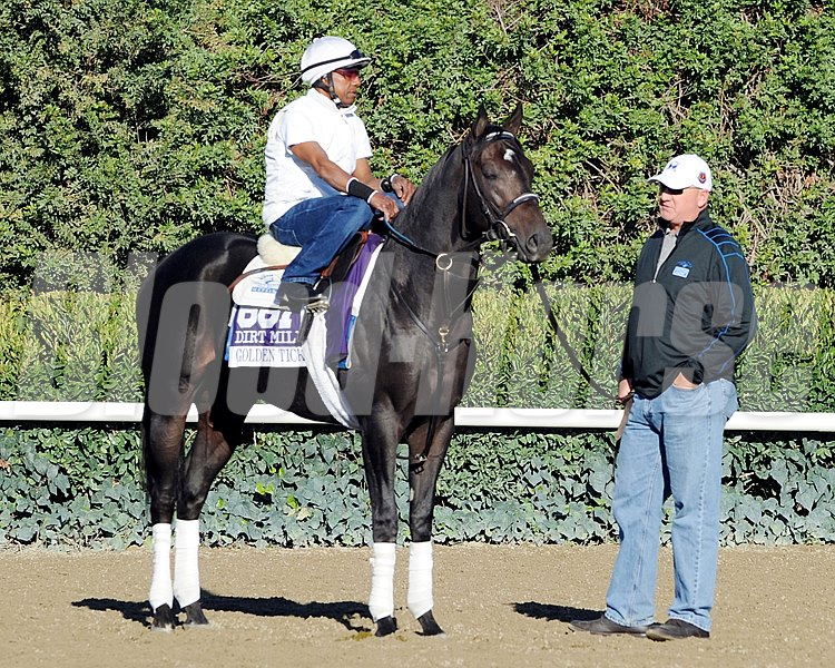 Golden Ticket works out in preparation for the 2013 Breeders' Cup at Santa Anita Park.