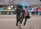 "Honor Code faces 9 in the Alysheba Stakes.<br><a target=""blank"" href=""http://photos.bloodhorse.com/AtTheRaces-1/At-the-Races-2015/i-SsMgNKF"">Order This Photo</a>"