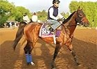Breeders' Cup News Update for October 27, 2014