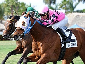 Amelia's Wild Ride wins the 2015 Gulfstream Park Turf Sprint Stakes.