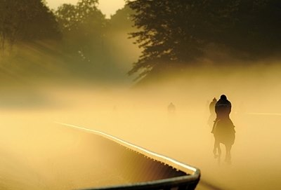 OUT OF THE GATE: Morning Magic: Thoroughbreds gallop through the early morning mist at the Oklahoma Training Track at Saratoga.