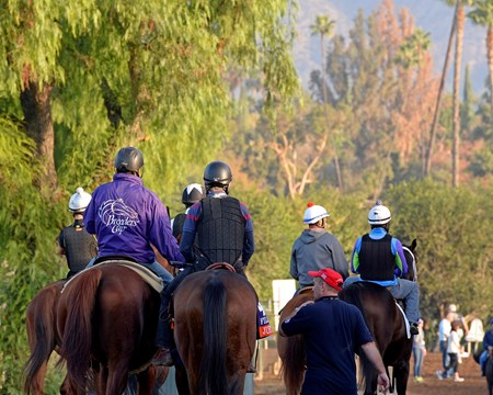 Caption:  backstretch scene