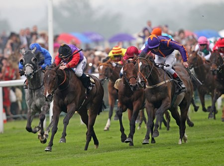 Estimate, ridden by Ryan Moore (black cap), defeats Simenon (orange star), in the Ascot Gold Cup June 20, 2013.