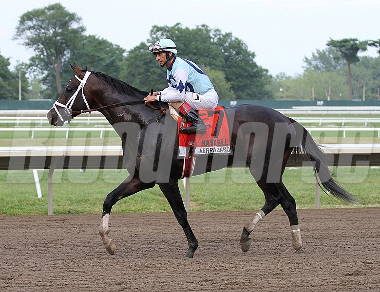 Verrazano #7 with John Velazquez riding won the $1,000,000, Grade I William Hill Haskell Invitational at Monmouth Park in Oceanport, N.J.  on 7/28/13.  